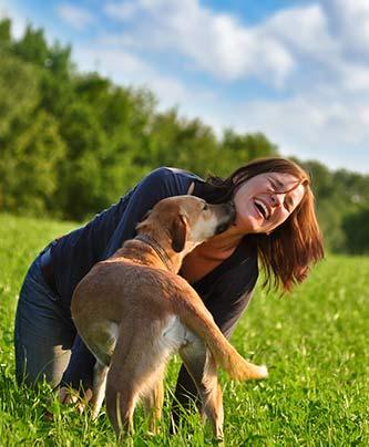 gute Mensch Hund Beziehung