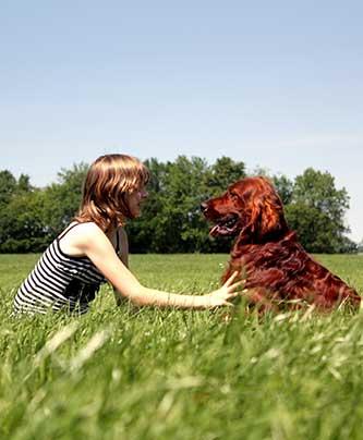 Frau kommuniziert mit ihrem Hund