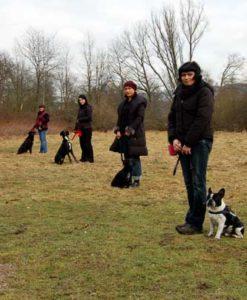 Teilnehmer beim Hundekurs