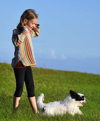 Mädchen mit ihrem Hund auf der Wiese