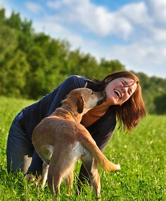 Hund Mensch Team beim herumalbern