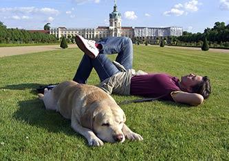 entspannter Mensch und Hund liegen auf der Wiese